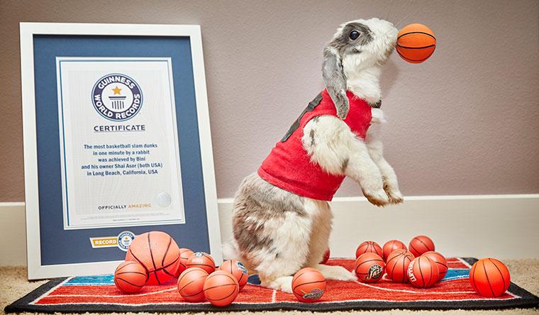 bini-the-bunny-most-slam-dunks-by-a-rabbit_tcm25-477865.jpg