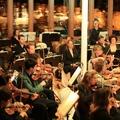 Magyar zenekar nyűgözi le az olaszokat