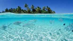 Dominika, a karibi gyöngy