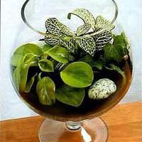 Mini kertek üvegbe zárva