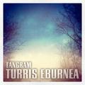 Tangram - Turris Eburnea