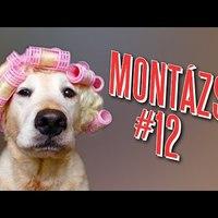 Videómánia Montázs #12