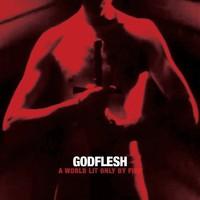 Ilyen zenét soha nem fogsz mástól hallani - Godflesh-lemezkritika