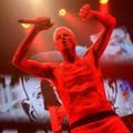 Pitbull terrier Dél-Afrikából - Die Antwoord-koncertkritika