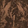 Közös kislemezt ad ki a Napalm Death és a Converge