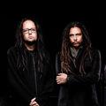 Korn és The Vaccines a Szigeten