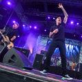 A fiúk balhét akartak - Dropkick Murphys-koncertkritika