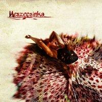 Itt a Meszecsinka első nagylemeze - Exkluzív online premier