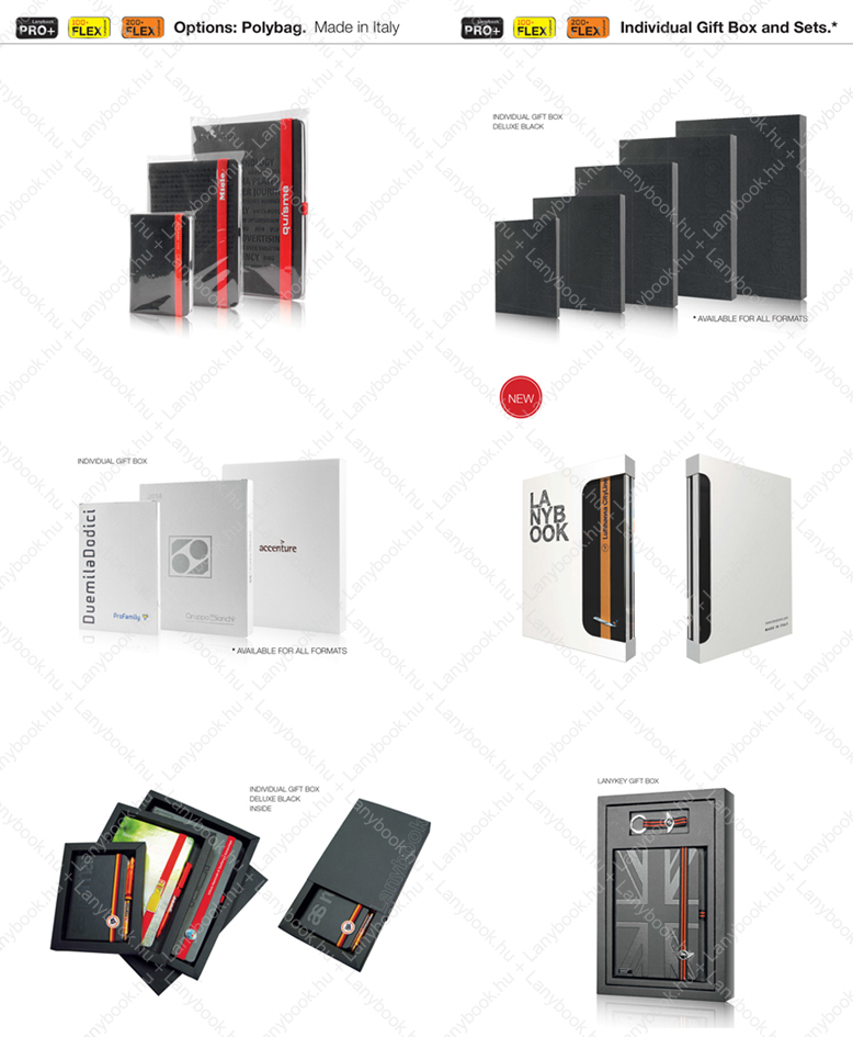 lanybook-flex100_n.jpg