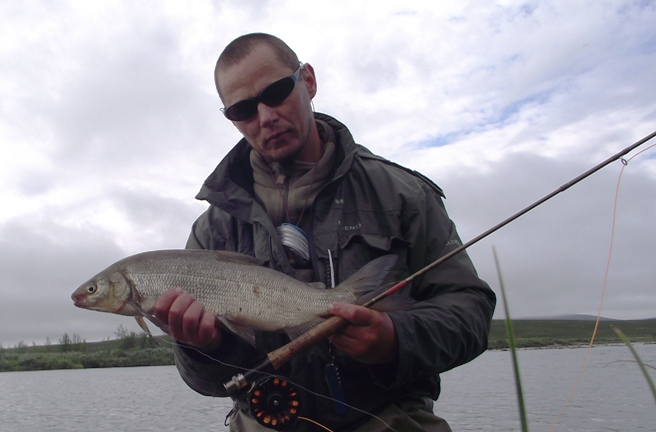whitefish58.JPG
