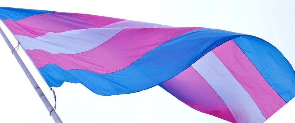 kgm_historic_trans_flag_raising_from_facebook.jpg