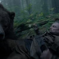 Így élj túl egy medvetámadást