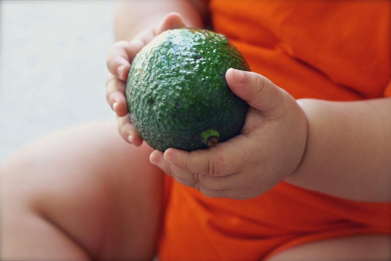 avocado-1476494_1280.jpg