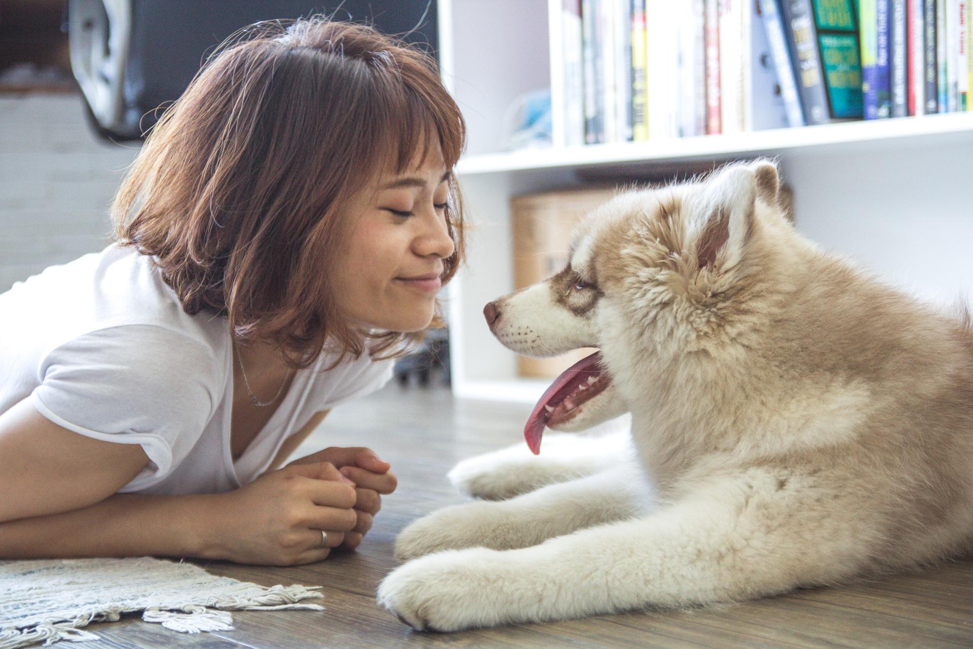 dog-smile-woman.jpeg