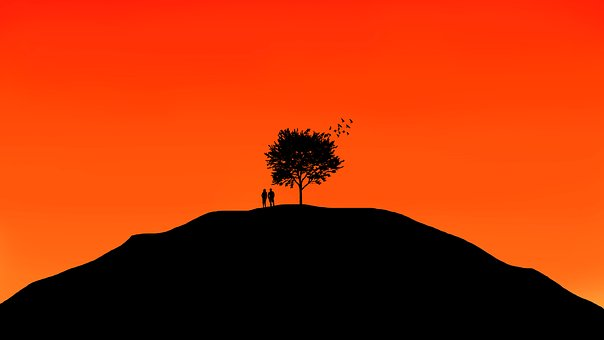 tree-2377575_340.jpg