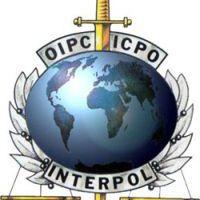 Az Interpol 1.0 (x)
