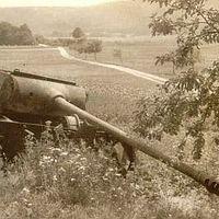 A tankokat szétszedik, ugye? (I.)