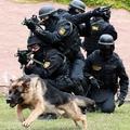 Műsorajánló VI.: a magyar terrorelhárítás