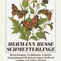 Hermann Hesse a lepkész