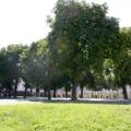 Jobban is lehetne hasznosítani a belvárosi parkolóhelyeket