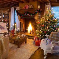 5 dolog, amit tudnod kell a karácsonyfáról