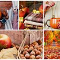 8+1 őszi hangulatjavító tipp