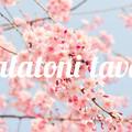 Ütős programokkal robban be a balatoni tavasz