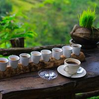 Indonézia kávékülönlegességei Budapestre érkeznek