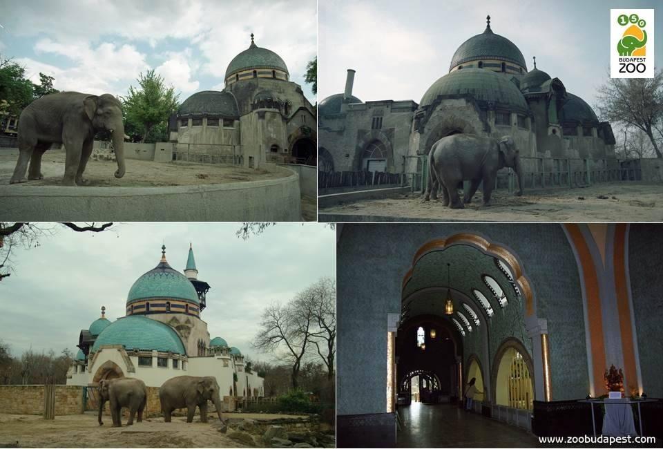 Elefántház