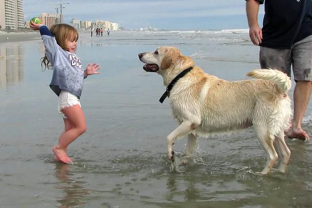 gyerek-es-kutya.jpg