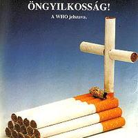 Hogyan káros a dohányzás?