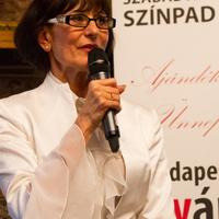 Budapesti Nyári Fesztivál 2013