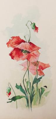 Pipacs virágok - 125 éve született Neumann Frida - akvarell alkotásai