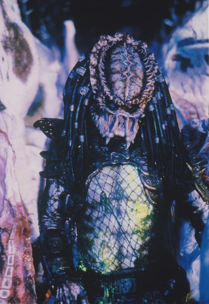 predator2stand.jpg