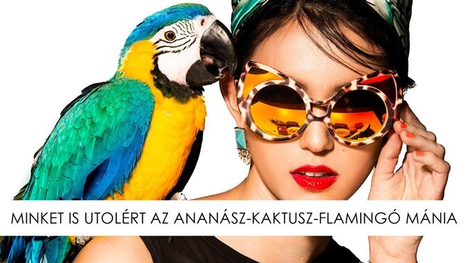 ananasz_cover.jpg