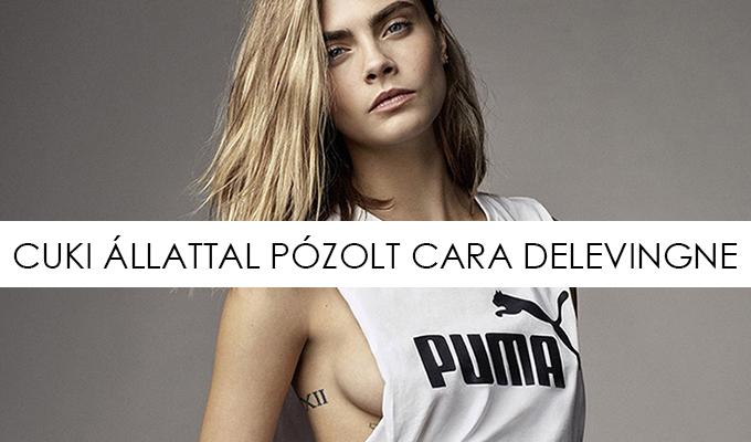 cara-puma-lead-lbf.jpg