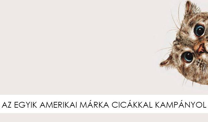 cica-taska-lbf-lead.jpg