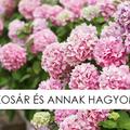 MÁJUSKOSÁR HAGYOMÁNYAI - MINDEN, AMIT TUDNI KELL RÓLA