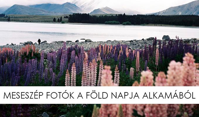 fold-napja-lead-lbf.jpg