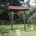 Rejtett kincs Zuglóban: a Varga Márton Szakiskola japánkertje