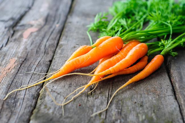 carrotjo.jpg