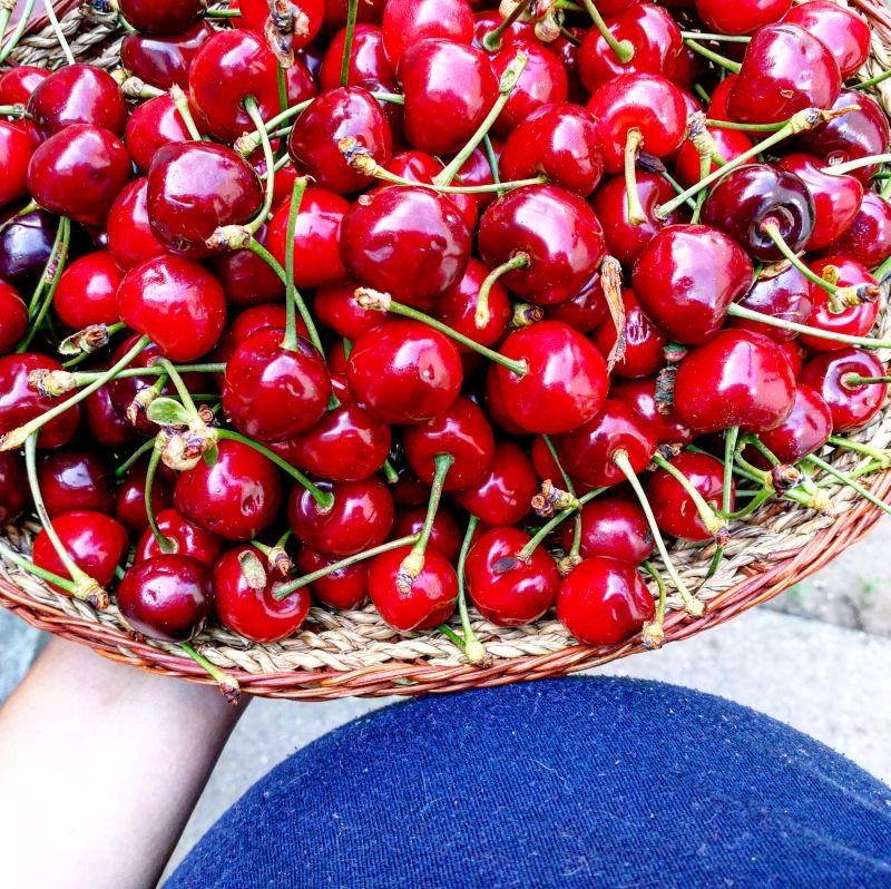 cseresznyespite1.jpg