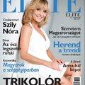 Fahéj a pörköltben?! - Lucullus BT cikksorozat az Elite Magazinban 1.