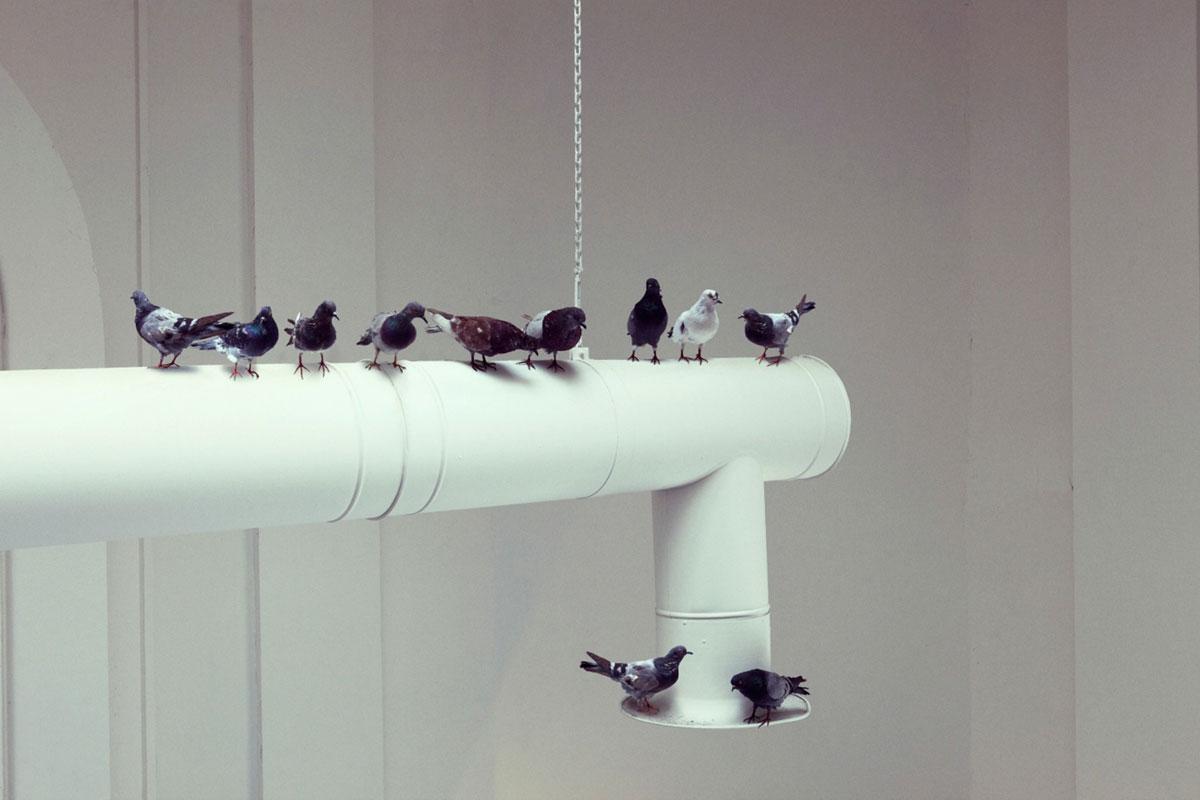 Maurizio Cattelan: Turisti. Installáció a 2012-es Velencei Biennále központi kiállításában