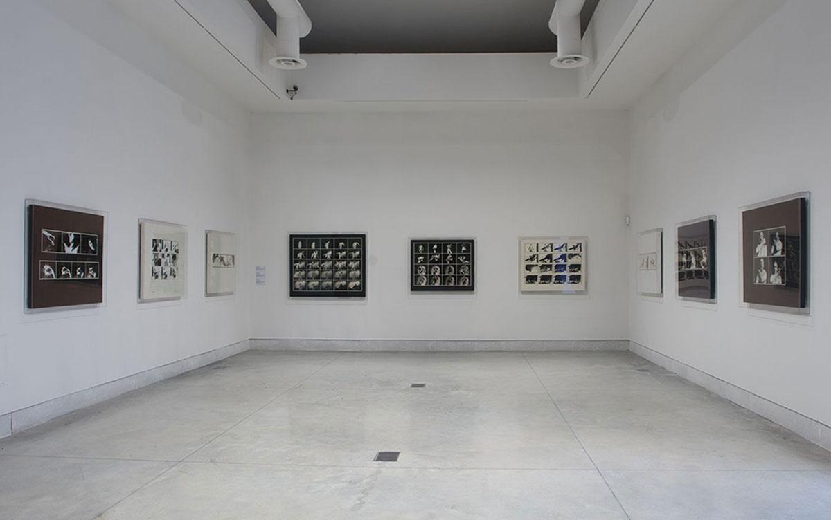 Hajas Tibor művei a Viva Arte Viva kiállításon   fotó: Rosta József