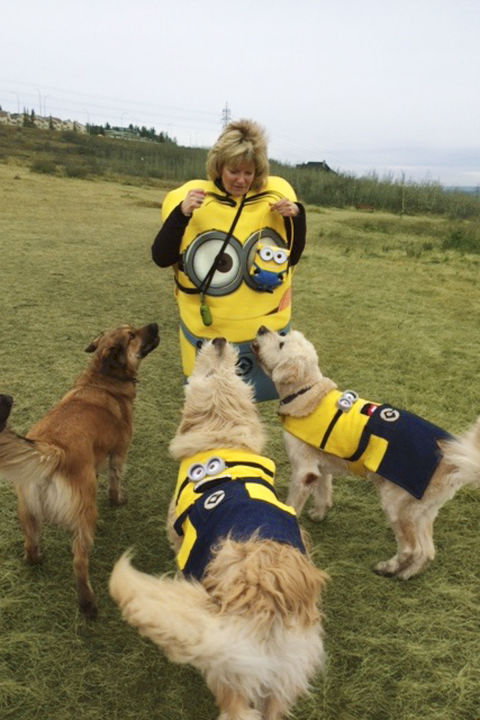 gallery-1505755689-minion-dogs.jpg