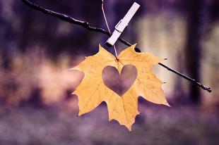 10 őszi dal