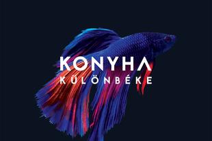 Az Akváriumban mutatja be a Konyha az új albumot