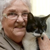 Szóval a legidősebb macska