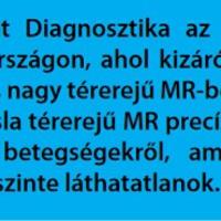 Világelső sas MR